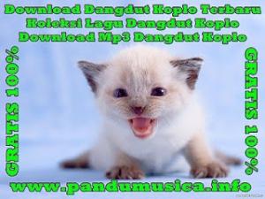 OM Monata - Live Banggi