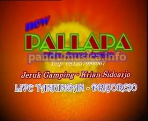 Dangdut Koplo - Dil Laga Liya - OM New Pallapa